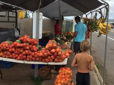 Shopping for fruit
