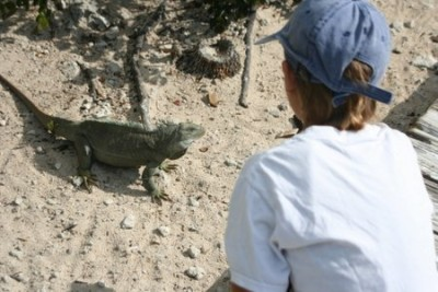 Joshua and one of the rock iguanas