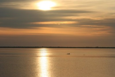 Leaving the anchorage at sunrise; a dolphin sees us off