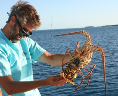 Matt examining the beautiful lobster